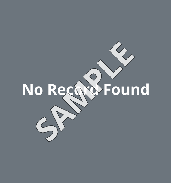 no_record_with_sample.png
