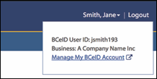 business bceid logged in user example