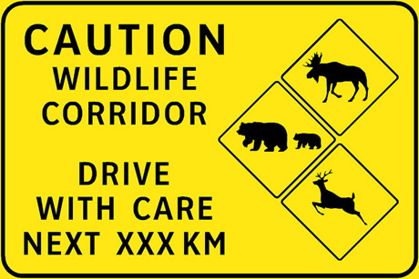 Caution Wildlife Corridor Drive With Care Next XXX KM sign