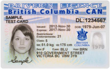 Sample licence