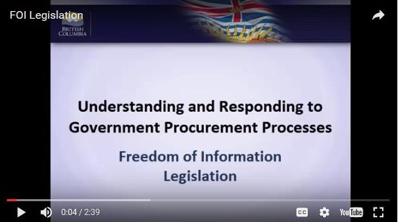 Screenshot of procurement course