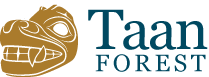 Taan Forest logo