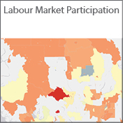 Labour Market Participation