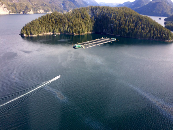 Diesel spill near Echo Bay taken on an overflight of the area March 6, 2017 at 1100hrs