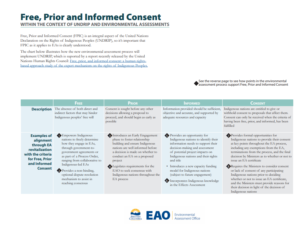 graphic demonstrating how free prior and informed consent is supported throughout the environmental assessment process