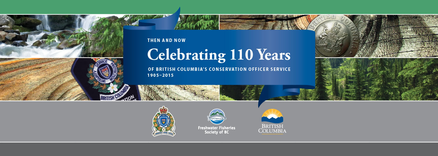 110 years of service banner