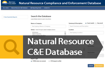 Launch the NR CE Database
