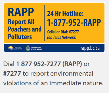 Report all Poachers and Polluters 24 Hotline Image