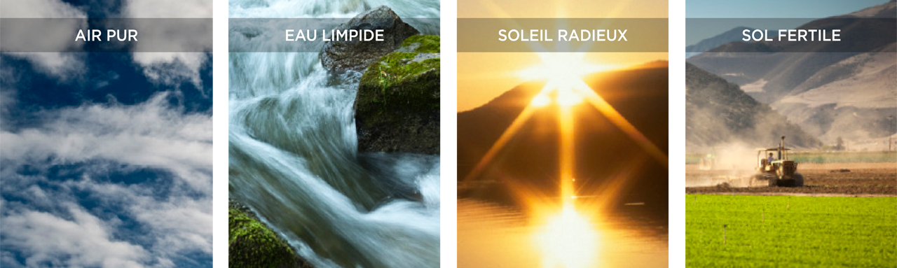 Image de Clean Air, Clean Water, Bright Sun, Good Soil