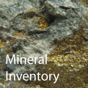 photo of mineralized rock