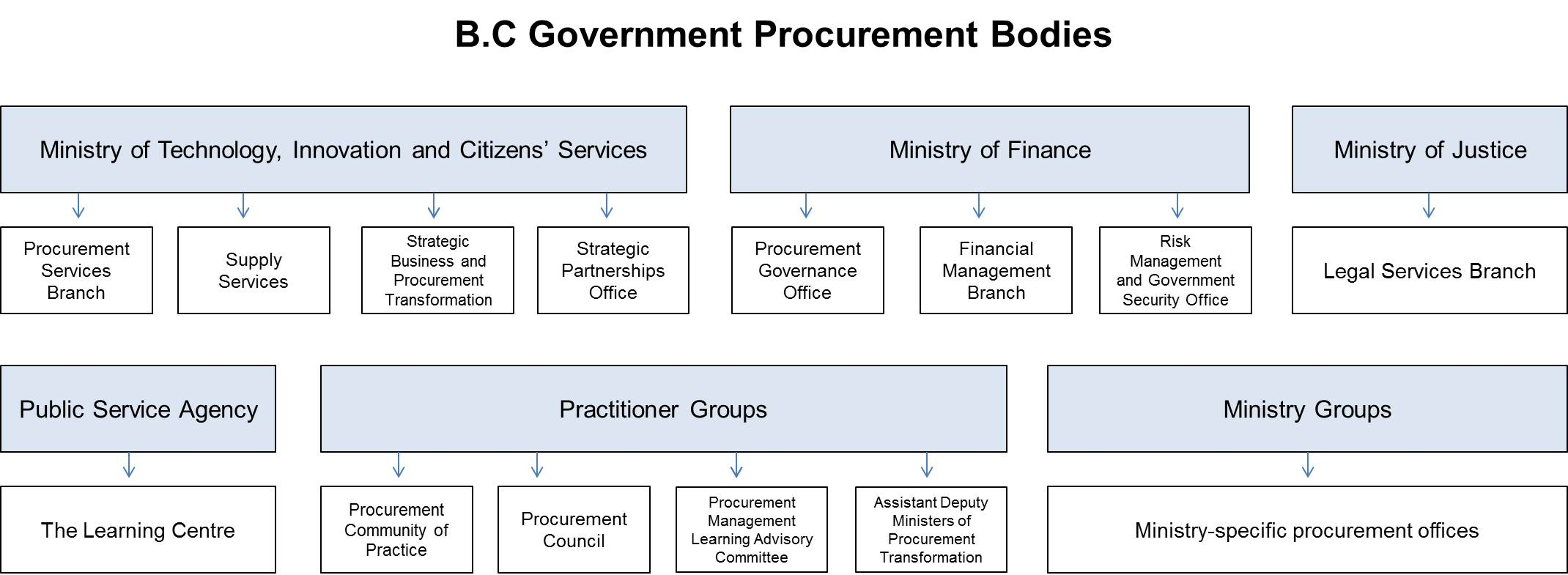 Government Procurement Structure Simple on It Governance Organizational Structure