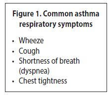 /assets/gov/health/practitioner-pro/bc-guidelines/images/asthma-adults-figure1.jpg
