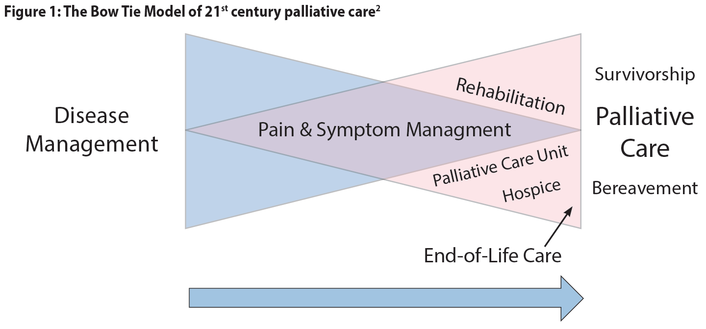 Figure 1: The Bow Tie Model of 21st century palliative care