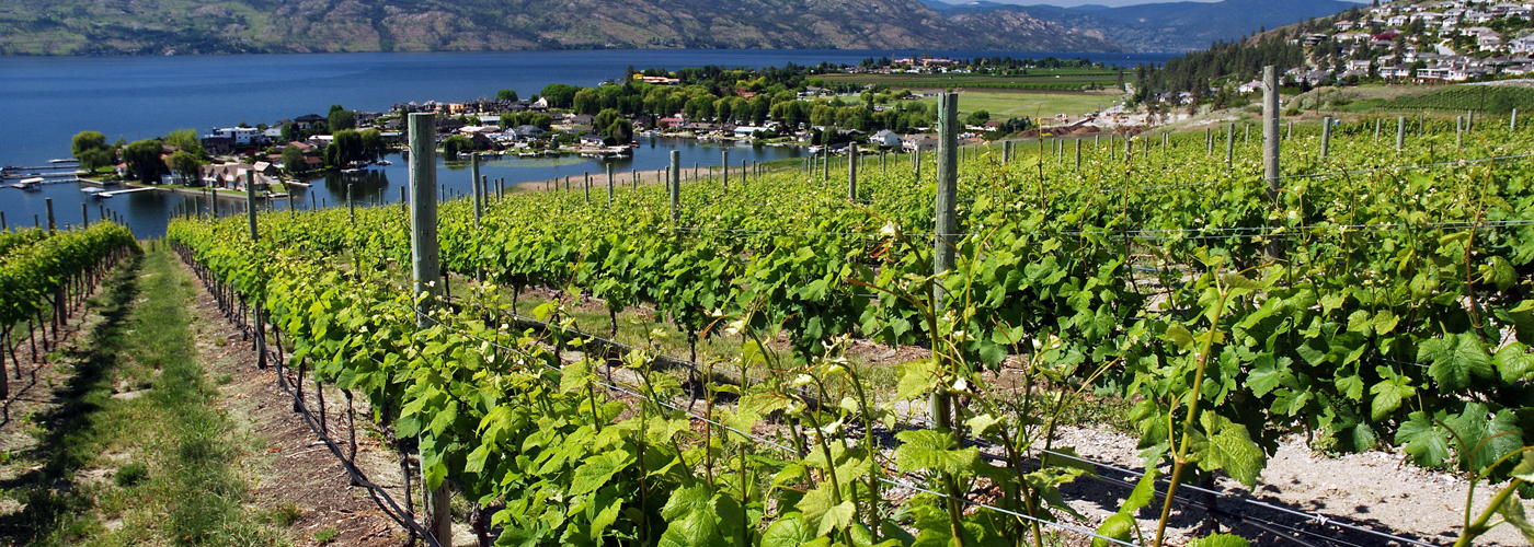 B.C.'s new interprovincial trade agreement with Ontario and Quebec will cut red tape for B.C. wineries.