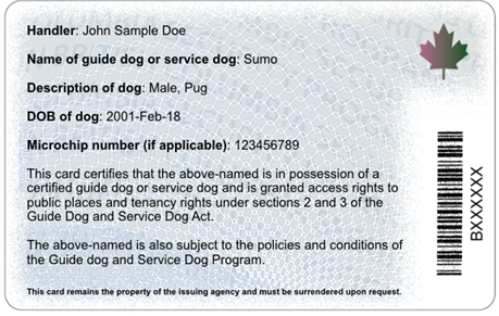 Guide Dog and Service Dog Certificate