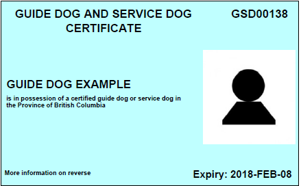 Showing the front of a sample of the Guide Dog and Service Dog Certificate Card used before April 12, 2016.