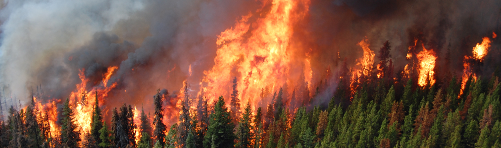 This year B.C. is adjusting the terms it uses to describe the status of wildfires, aligning closer with nationally-recognized terminology.