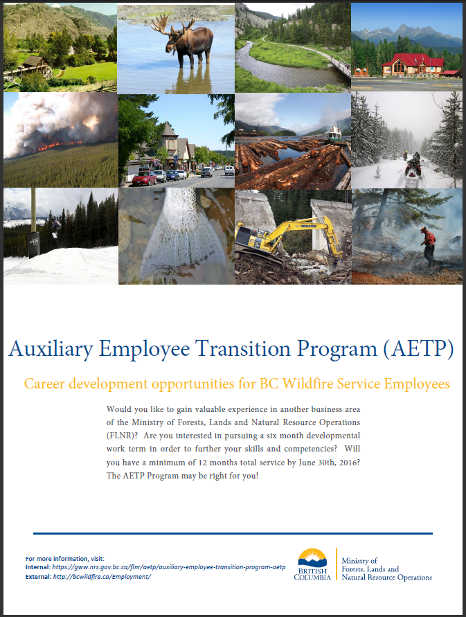 Thumbnail of AETP poster